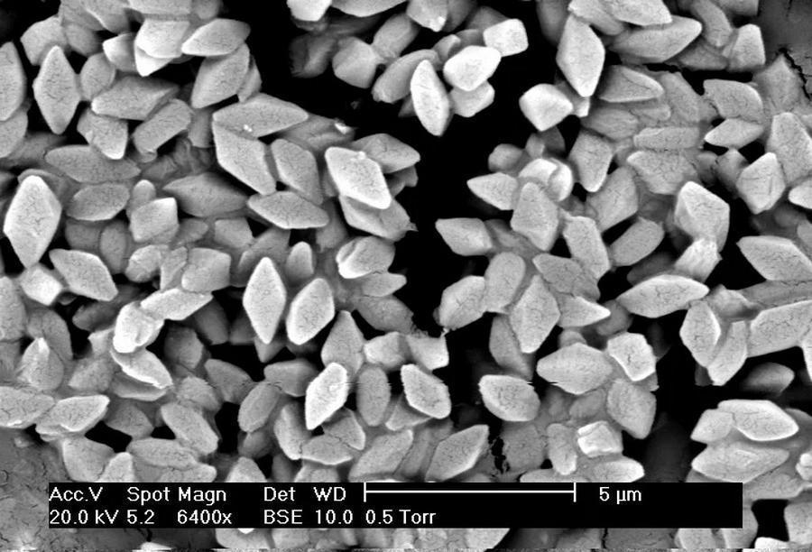 Глобальное таяние льдов высвободит древние опасные вирусы