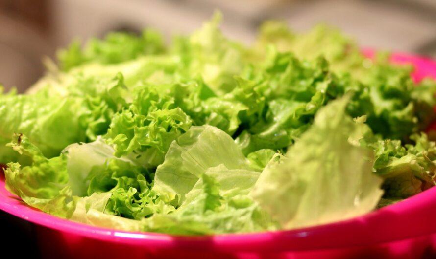 Польза и незаменимость листьев салата