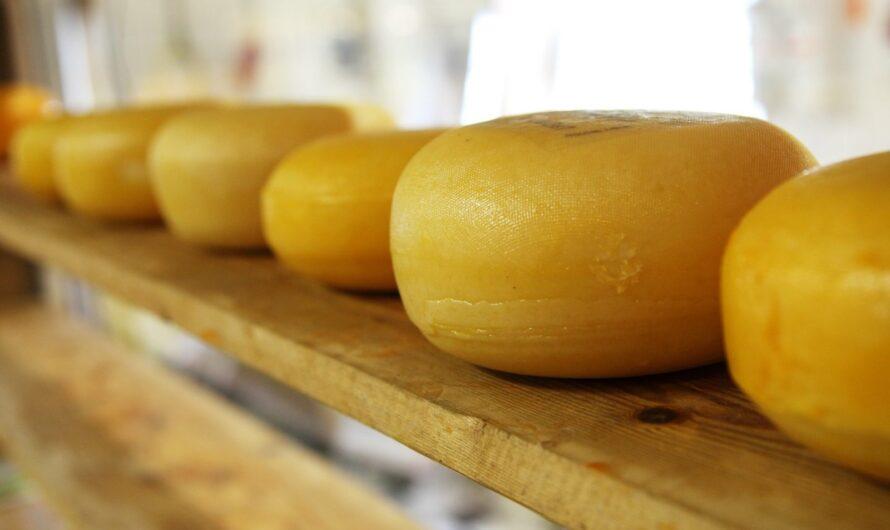Вред сыра, который скрывают производители