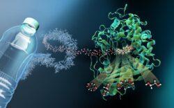 Создан фермент, разлагающий пластик в 100 раз быстрее природы