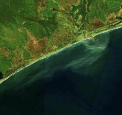 Greenpeace: На Камчатке произошла экологическая катастрофа