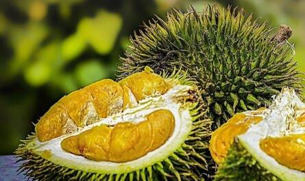 Топ-5 экзотических фруктов, которые стоит попробовать