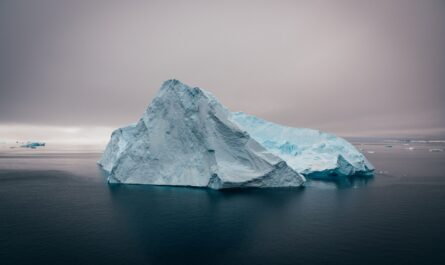 10 интересных фактов об Антарктиде, которые вы могли не знать