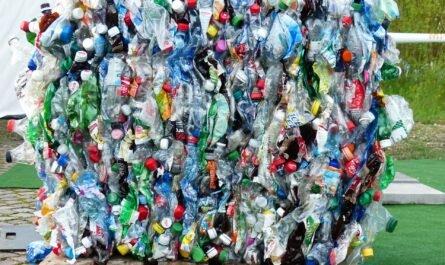Глобальные экологические проблемы: как простые люди спасают планету